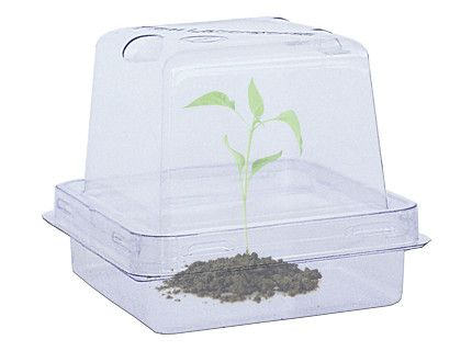 PlantCon™ Plant Container